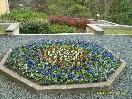 Parková květinová údržba - Městský úřad Louny